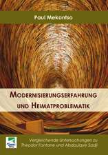 Modernisierungserfahrung und Heimatproblematik