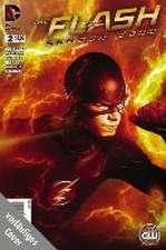 Flash: Staffel Null, Bd. 2 (zur TV-Serie)