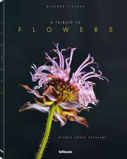 A Tribute to Flowers, Hardcover version