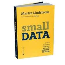 Small DATA: Indicii mărunte care scot la iveală trenduri în masă