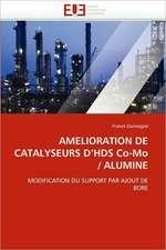 Amelioration de Catalyseurs D'Hds Co-Mo/Alumine:  Une Frontiere a la Carte?