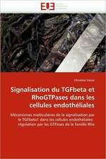 Signalisation du TGFbeta et RhoGTPases dans les cellules endothéliales