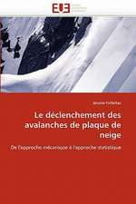 Le Declenchement Des Avalanches de Plaque de Neige:  Etude Asymptotique Et Simulation