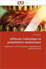 Diffusion Inelastique Et Polarimetrie Neutronique:  de La Propriete A L''Application