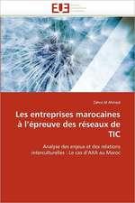 Les entreprises marocaines à l'épreuve des réseaux de TIC
