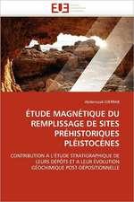 Etude Magnetique Du Remplissage de Sites Prehistoriques Pleistocenes