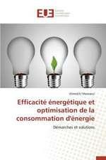 Efficacite Energetique Et Optimisation de La Consommation D'Energie:  Le Cas Espagnol