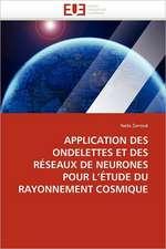 Application Des Ondelettes Et Des Reseaux de Neurones Pour L Etude Du Rayonnement Cosmique:  Theorie Et Pratique