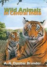 Wild Animals in Central India