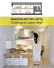 REMODELLING TINY LOFTS