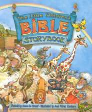 The Little Children's Bible Storybook