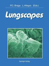 Lungscapes