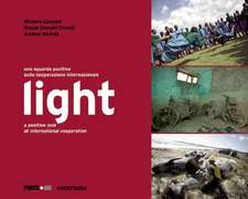 Light:  A Positive Look at International Cooperation