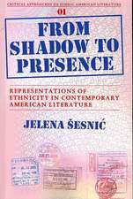 From Shadow to Presence: Representations of Ethnicity in Contemporary American Literature