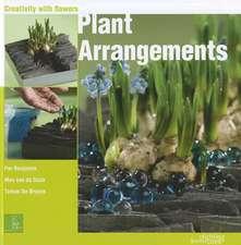 Plant Arrangements: Creativity With Flowers