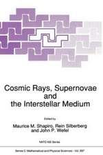 Cosmic Rays, Supernovae and the Interstellar Medium