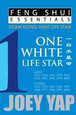 Feng Shui Essentials - 1 White Life Star