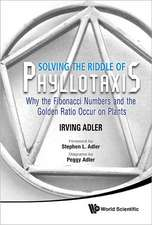 Solving the Riddle of Phyllotaxis