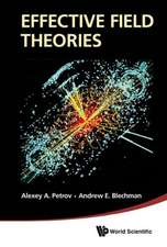 Effective Field Theories